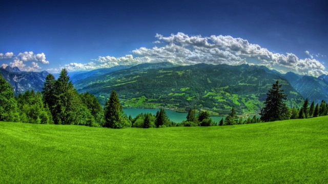 nature, sky, clouds, mountains, forest, trees, grass, green-grass, wow