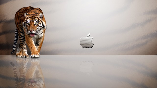 hd wallpapers of tigers. Desktop wallpapers - apple