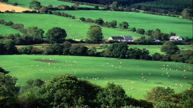 Fields and Farmhouses of County Cork, Ireland desktop background