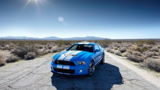 cars, ford, ford-shelby