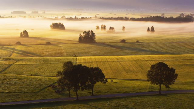 Mist Above Meadow Grossweil Germany