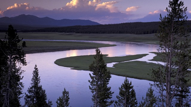 Yellowstone River Running Through Hayden Valley, Yellowstone National Park, Wyoming