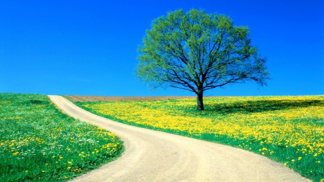Spring Hd Background Pictures